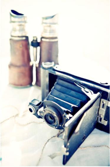 Vintage Camera Centerpiece