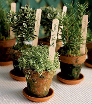 potted herbs can serve as centerpieces and guest favors at a wedding