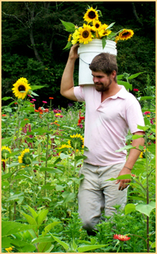 Mike picks sunflowers and Lady Luck Flower Farm