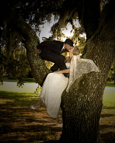 Trash the Dress session with a couple in a tree