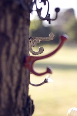 Vintage coat hooks in a tree