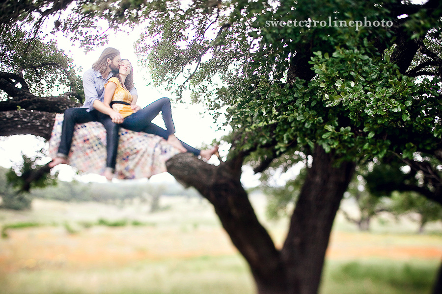 Engaged couple sit in a tree