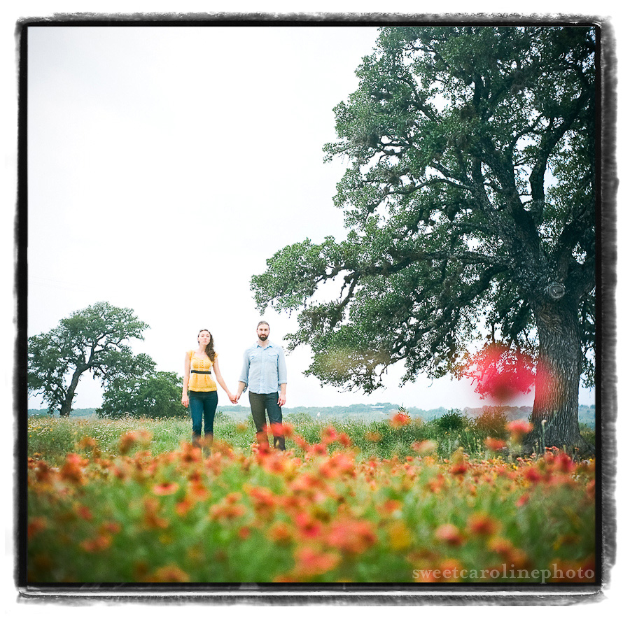 engaged couple stands in a field of poppys