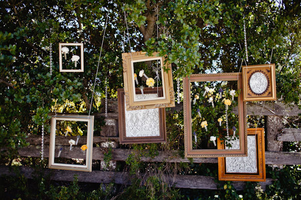 vintage frames hang from trees