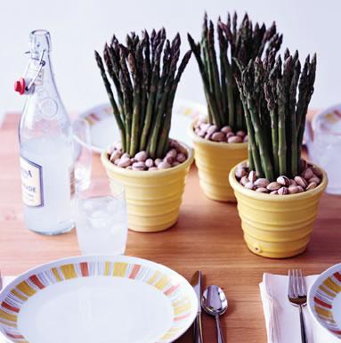 asparagus in pots