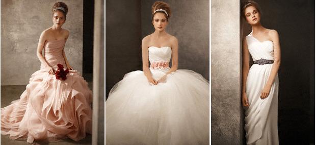 Davids Bridal Gowns by Vera Wang