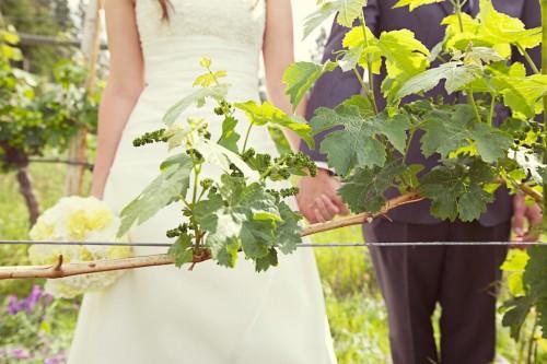 BC Wedding Bridal portraits in a vineyard