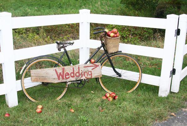 Adirondack Wedding with bicycle