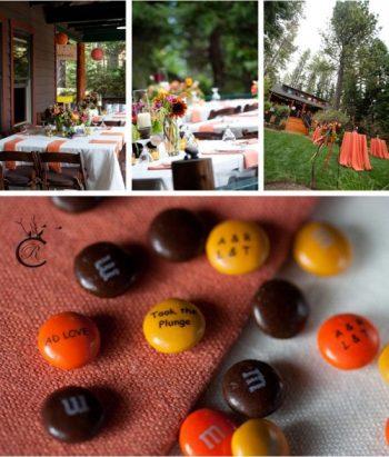 Backyard DIY Wedding in Lake Tahoe