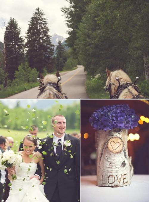 Horses and birch bark at an Aspen Wedding