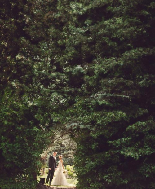 Bride and groom in a wooded copse