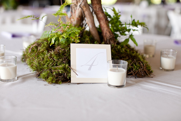 twig and moss table number