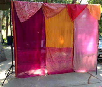 Rogue Bride's Intended Sari Backdrop