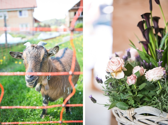 pretty purple and white centerpiece and farm goat