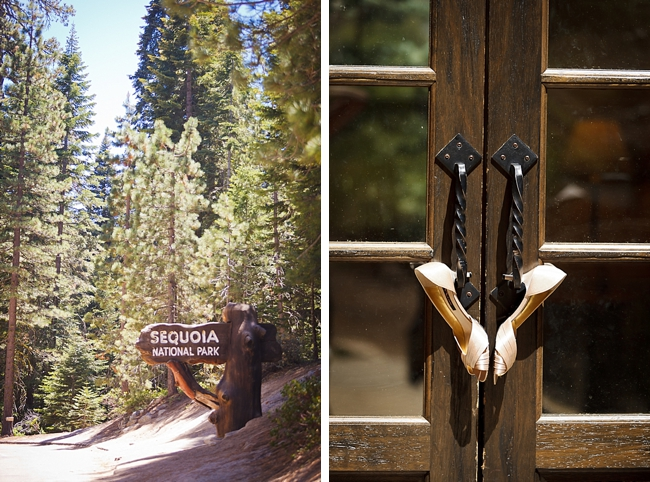 rustic lodge sequoia national park wedding