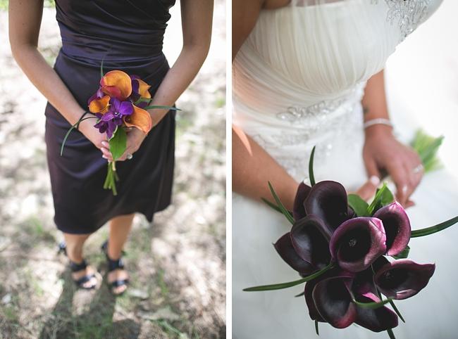 purple cala lilies