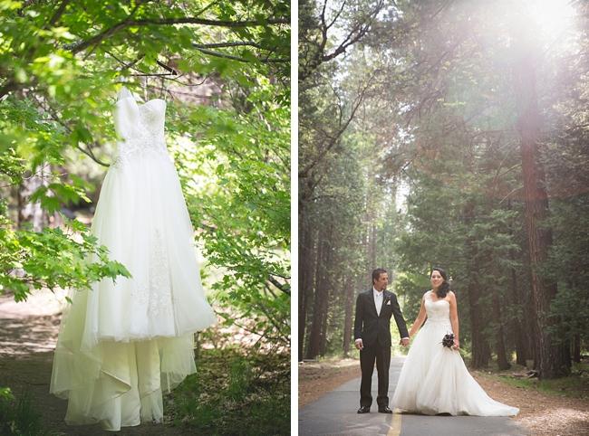 Wedding dress sin a tree in Yosemite