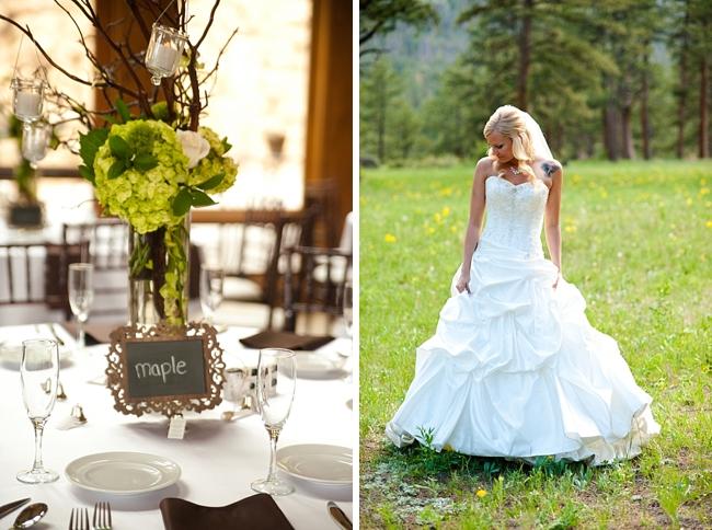 3-Estes-Park-Wedding-Dash-Photography