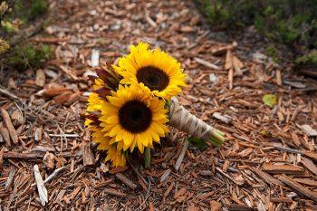 sunflower wedding bouquet | Colorado Wedding