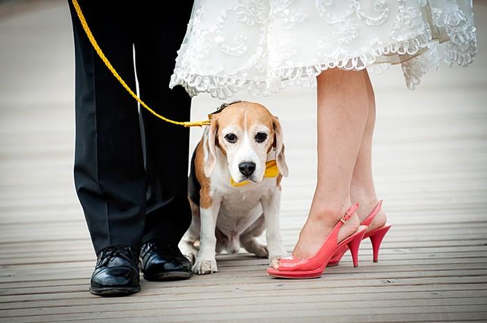 17-banff_wedding_photographer_kimpayantphotography_079
