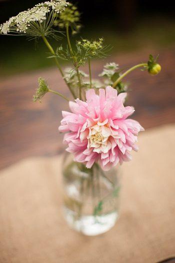 pink mum in bud vase