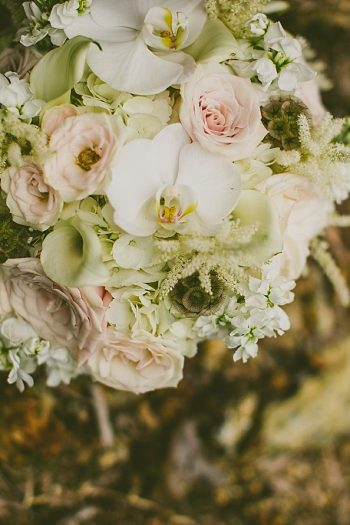 Asheville Mountain Wedding   Photography by Carolyn Scott See more: : https://mountainsidebride.com/2014/02/asheville-mountain-wedding-with-vintage-details