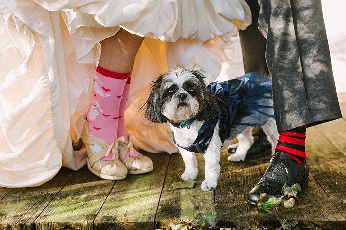 wedding socks   JoPhoto  Townsend Tennessee