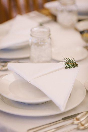 pine sprig napkin  JoPhoto  Townsend Tennessee