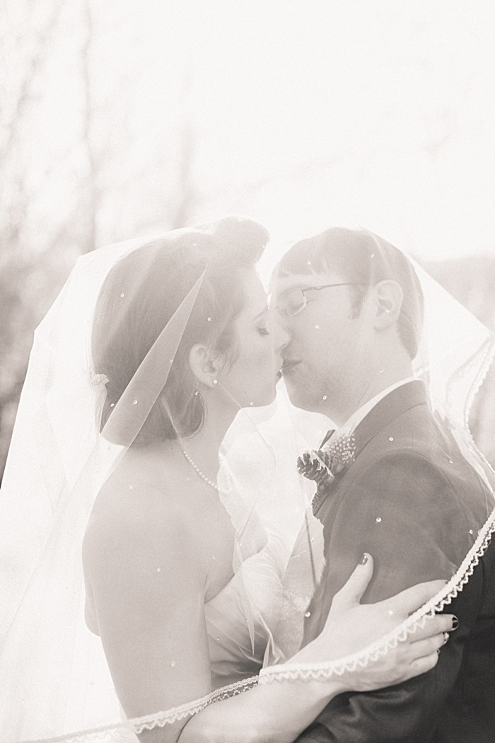 kiss Under Veil | JoPhoto |Townsend Tennessee