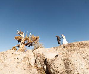 June Lake Wedding Bergreen Photography-
