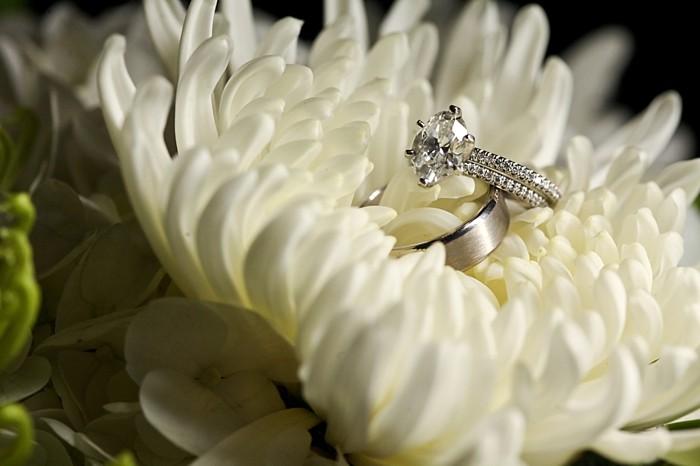 rings   Deer Valley Utah Wedding    Pepper Nix Photography