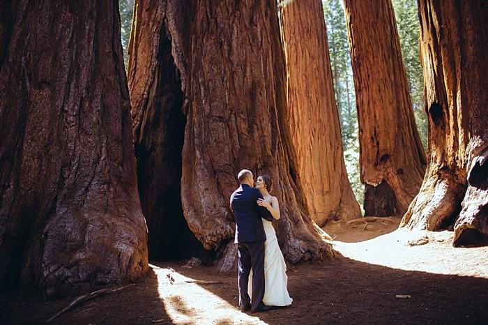 Sequoia Elopment