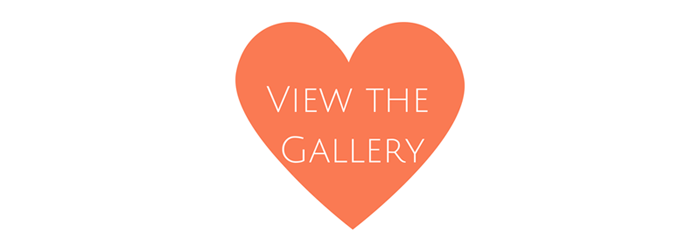 View the Gallery