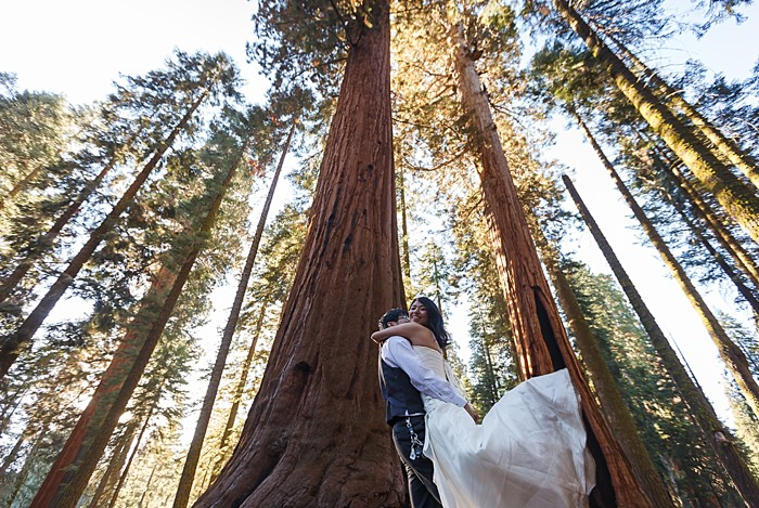 Sequoia National Park Bridal shoot by Bergreen Photography