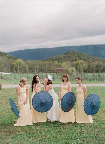 Blue Ridge Mountain Wedding | Michael and Carina Photography
