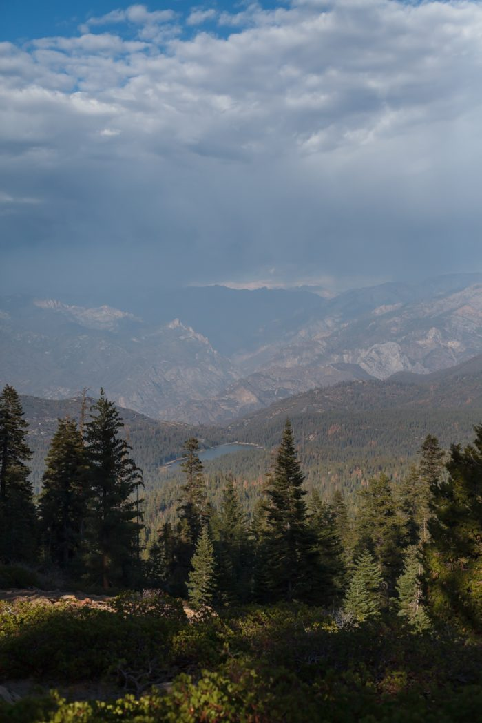 Getting married in Sequoia National Park | Panoramic Point 01