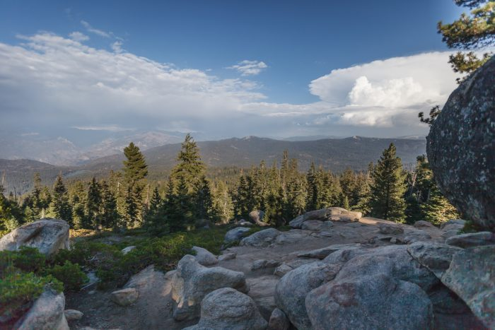 Getting married in Sequoia National Park | Panoramic Point 02