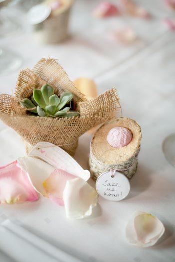 succulent favors | Lake Tahoe Wedding | Eric Asistin Photographer