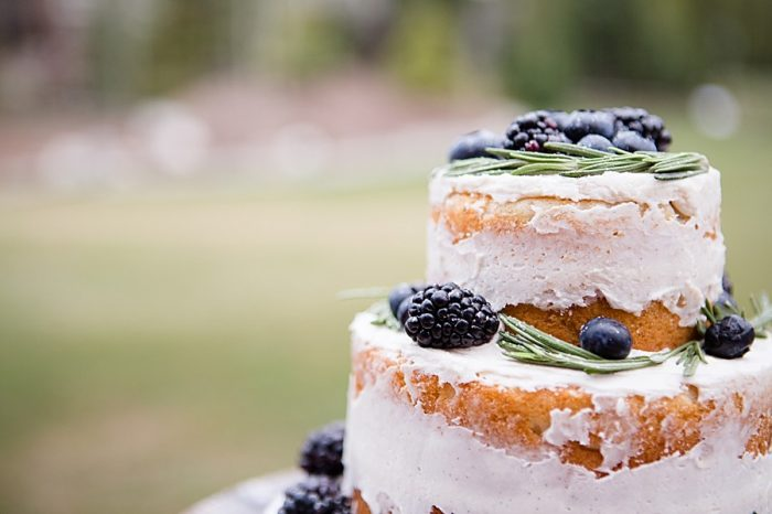 blackberry rustic wedding cake | Watercolor Wedding Inspiration | Nordic Center Breckenridge Colorado | Sarah Roshan Wedding Photographer