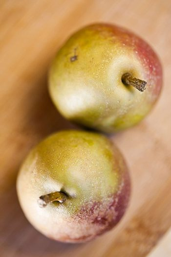 Pears | Aspen Gold Utah Wedding Inspiration | Pepper Nix Photography | Via MountainsideBride.com