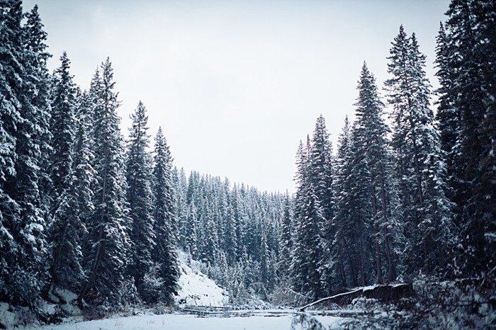 1 Calgary Winter Engagement   Nicole Sarah Photography   Via MountainsideBride Com