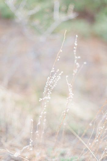 3a Lindsey Brooke Photographie | Via MountainsideBride.com