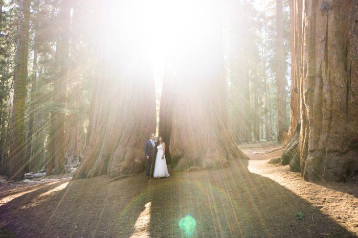 Sequoia Elopement Bergreen Photography | Via MountainsideBride.com