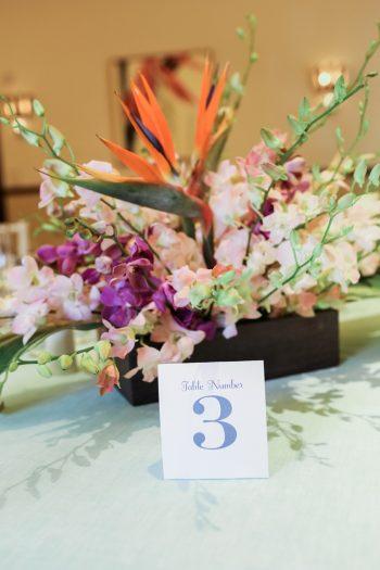 Sandals Royal Bahamian | Alexis June Weddings Aisle Society Retreat 286