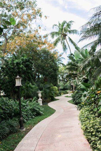 Sandals Royal Bahamian | Alexis June Weddings Aisle Society Retreat 87