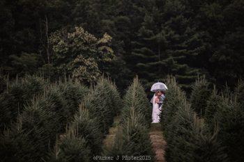 Christmas Tree Farm NC Wedding | Parker J Pfister |via Mountainside Bride