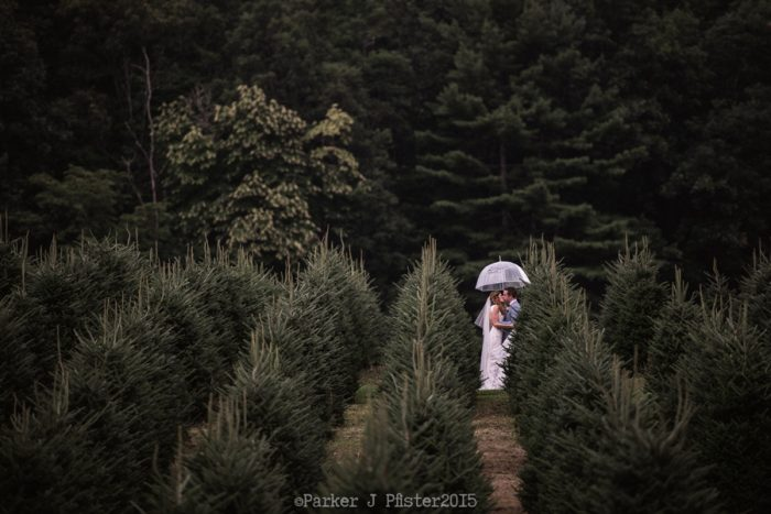 Christmas Tree Farm NC Wedding | Parker J Pfister |via Mountainside Bride