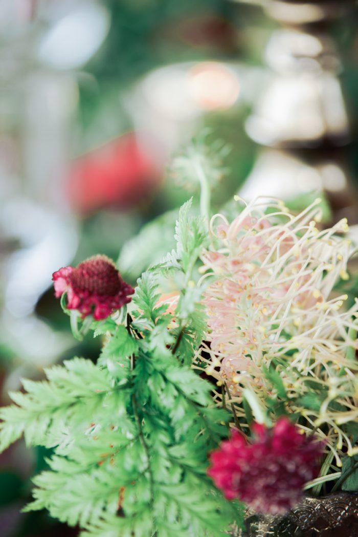 25 Rancho Villa Garden Colorado Rebecca Marie Photography