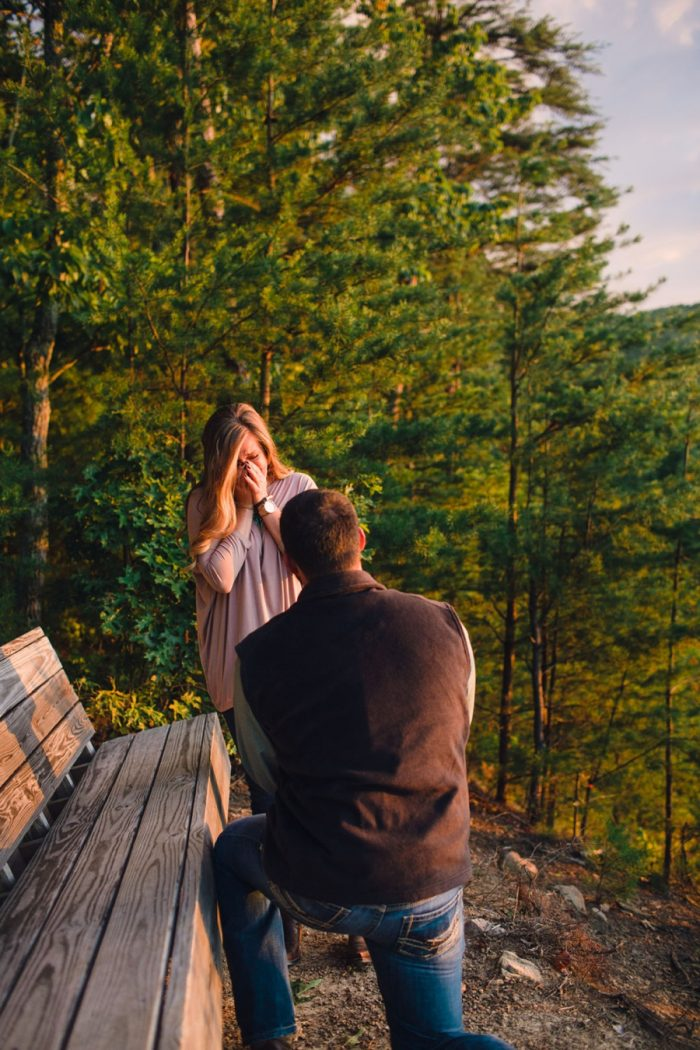 5 Butterfly Gap Surprise Engagement Red Boat Photography Via Mountainsidebride Com