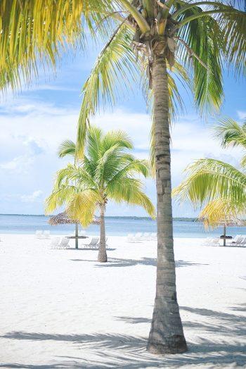 2a Abaco Bahamas Honeymoons